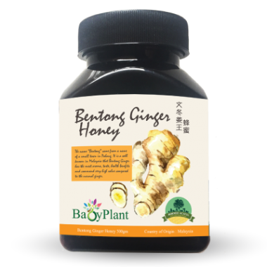 Bentong Ginger Honey - 120g