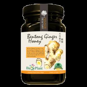 1 bottle Bentong Ginger Honey & 1 bottle Ceylon Cinnamon Honey