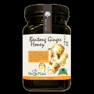 Bentong Ginger Honey