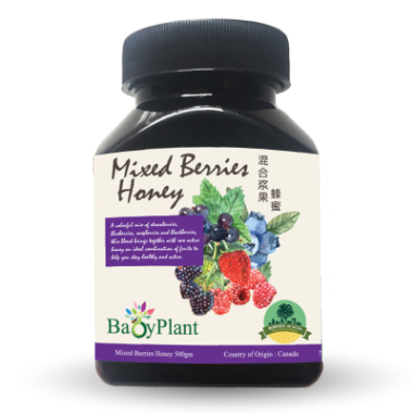 Mixed Berries Honey - 120g