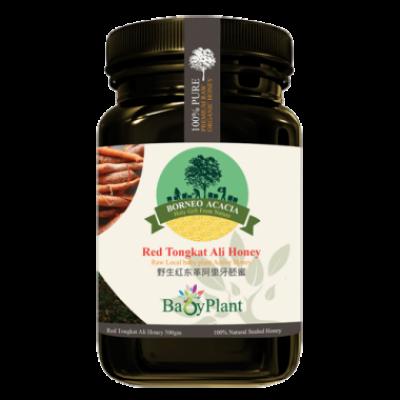 Red Tongkat Ali Honey