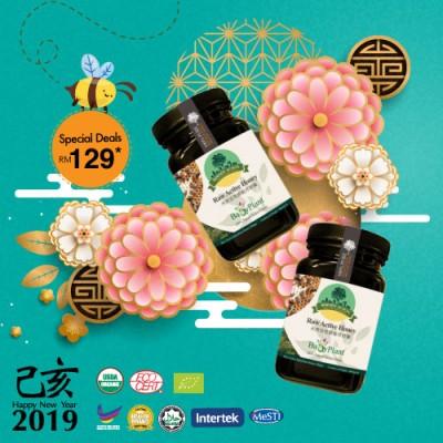 2 bottle Borneo Rainforest Raw Active Honey