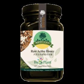 Borneo Raw Active Honey