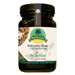 Babyplant Raw Active Honey